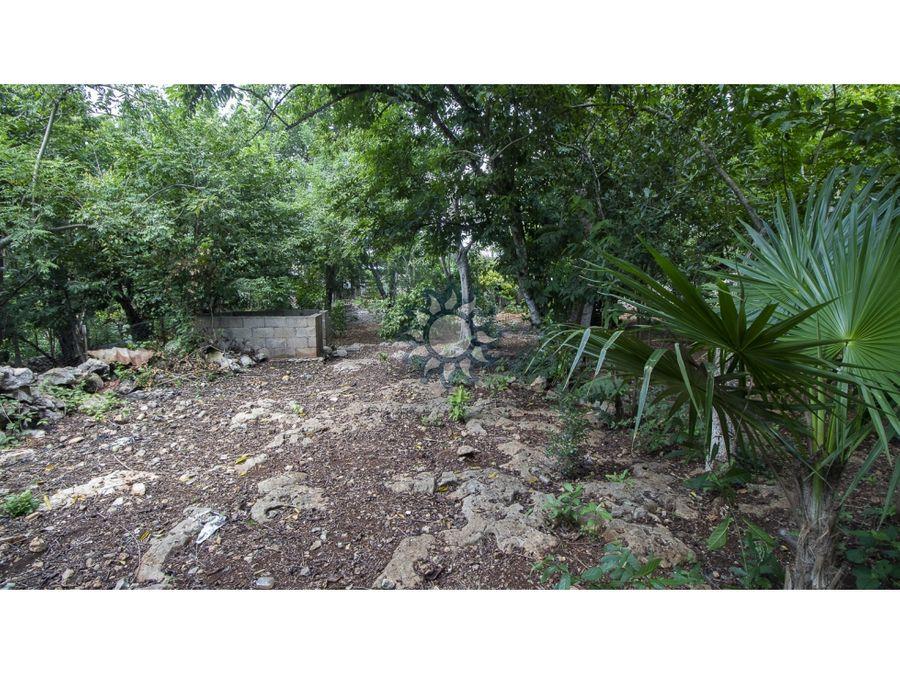 terreno en venta ubicado a dos cuadras del parque de sisal