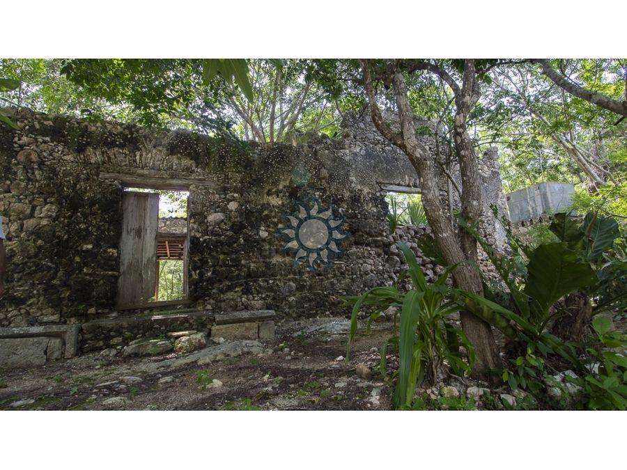 propiedad con 2 cenotes en venta en tixcacalcupul