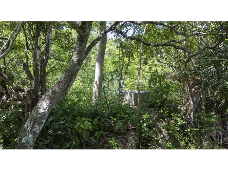 rancho con cenote en yucatan