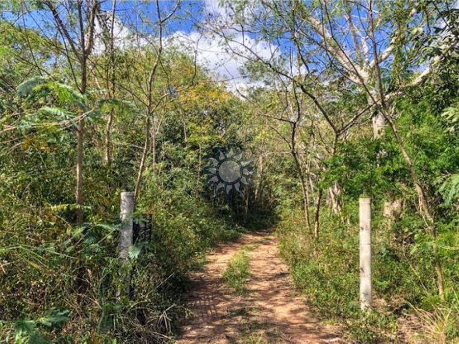 65 hectareas en ebtun cerca de la termoelectrica