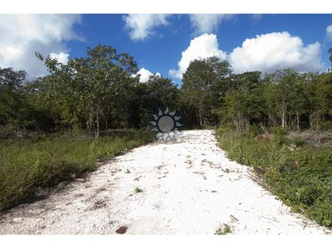 terrenos a 10 minutos de valladolid yucatan escriturados