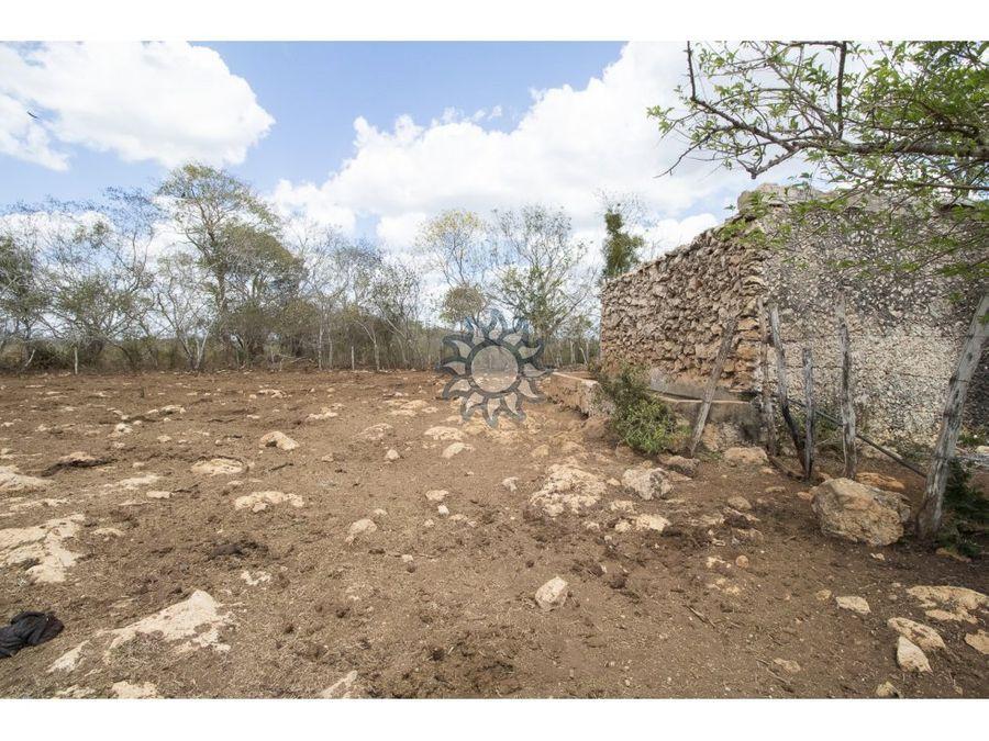 rancho en venta en chechmil yucatan