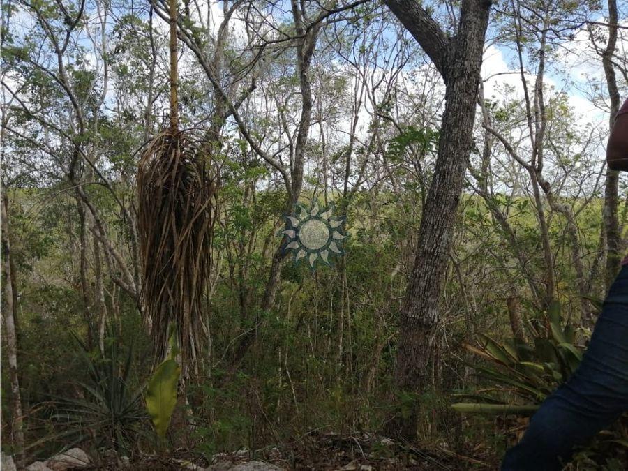hacienda en venta en xalau yucatan
