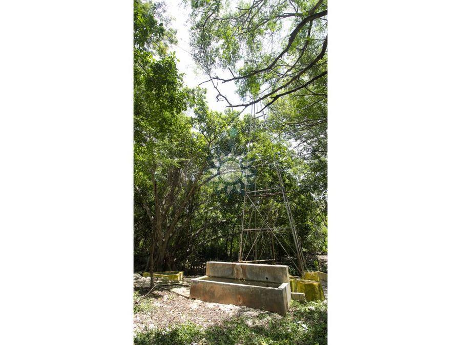 rancho con cenote en venta
