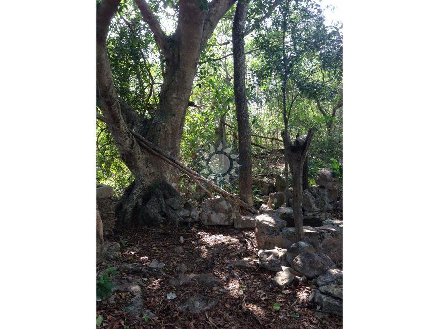 finca con cenote en venta en hunuku