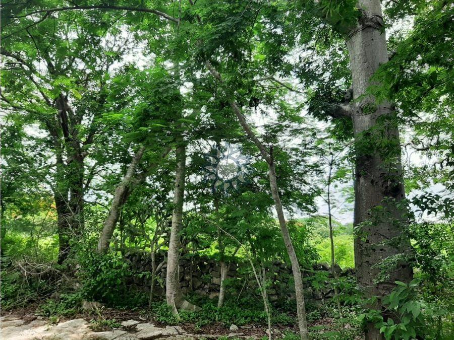 hectareas en venta sobre el periferico de valladolid