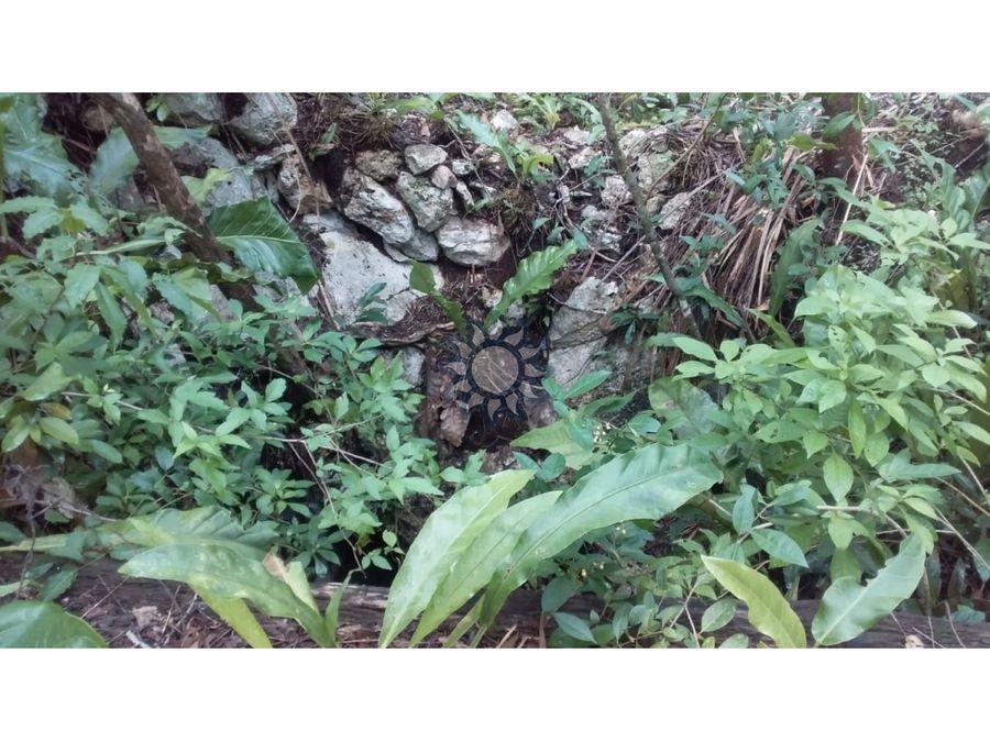 cenote en venta en tikuch