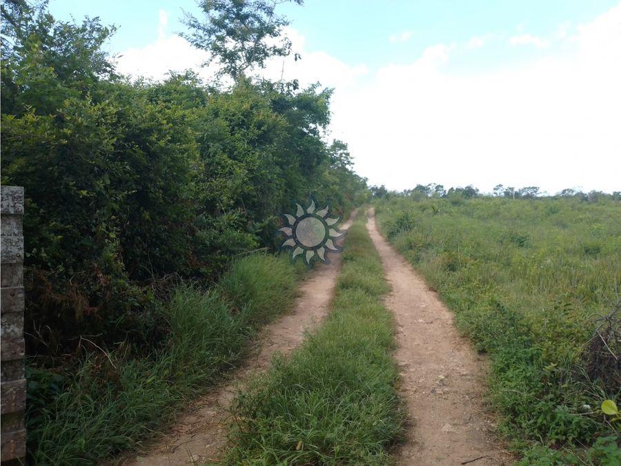 10 hectareas en venta cerca de valladolid