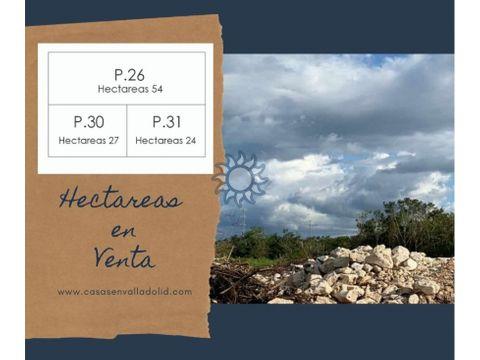 hectareas en venta cerca de colonia yucatan