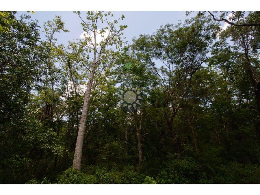 cenote en venta cerca de ek balam
