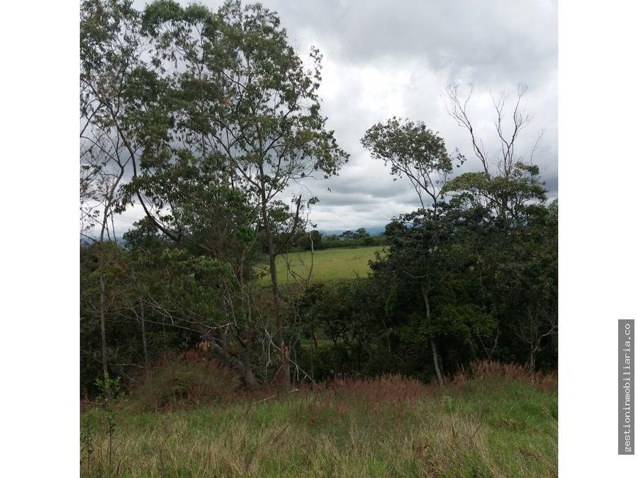 parcela 7765m2 via las guacas popayan