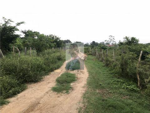 terreno campestre arjona