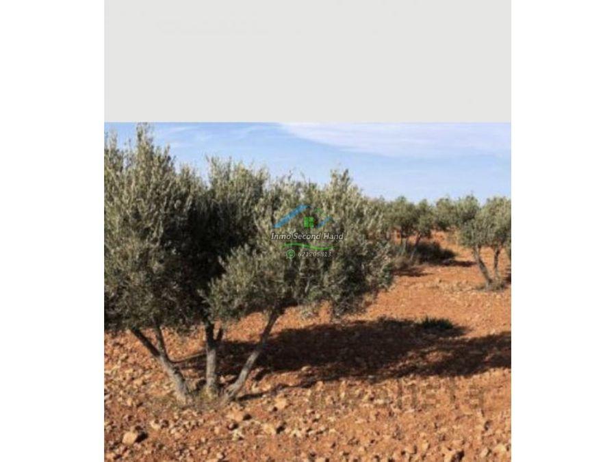 terreno en cartagena la magdalena