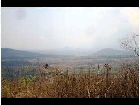 terreno en renta km34 carr a el salvdor d