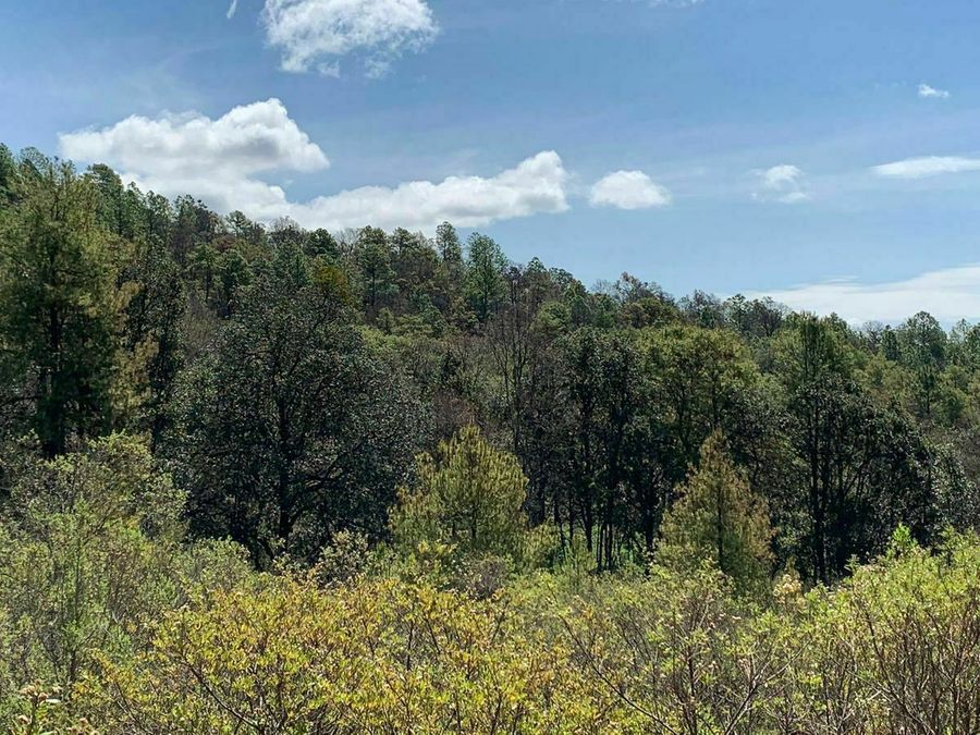 terreno grande en venta yotatiro eronga con vista