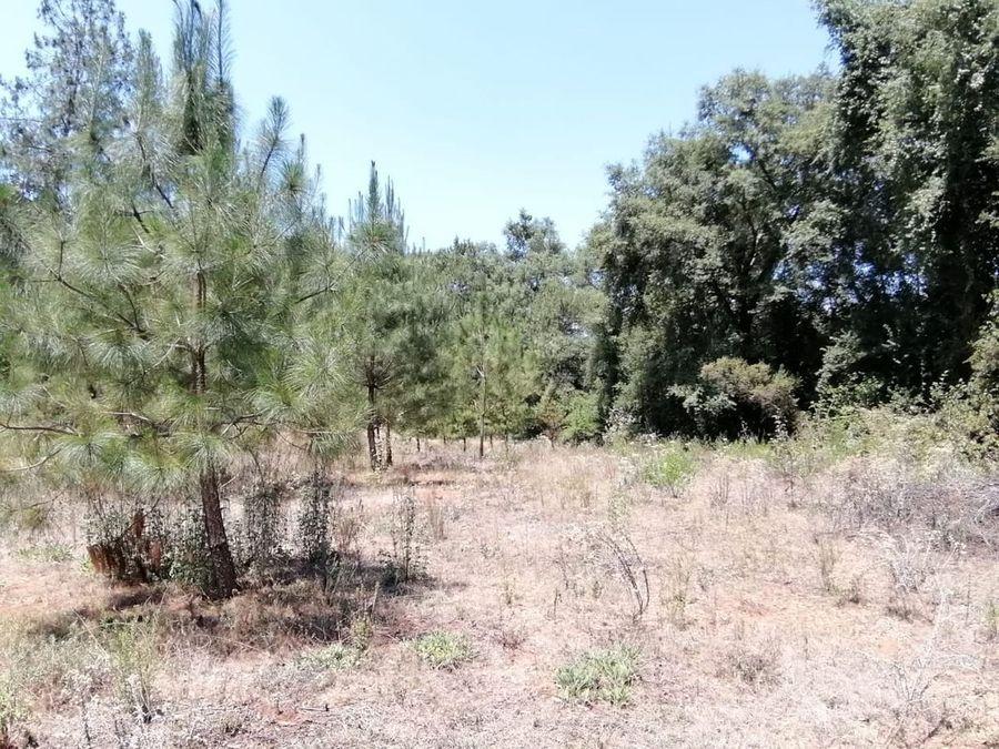 terreno en venta en la entrada a zirahuen