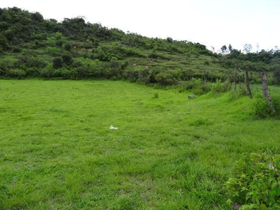 terreno en venta en arocutin ideal para siembra