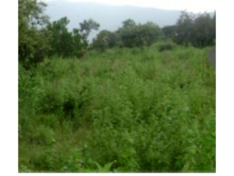 terreno en renta en tepotzotlan