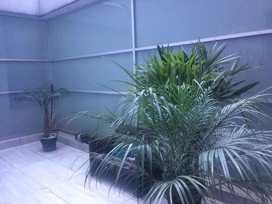 departamento hacienda de las palmas