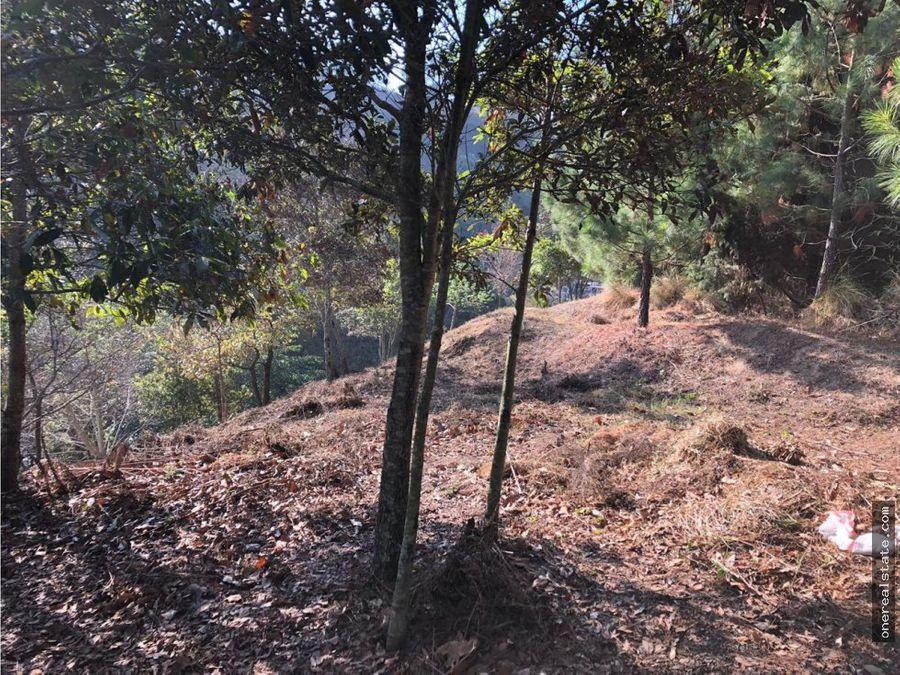 terreno zona 16 acacias de cayala