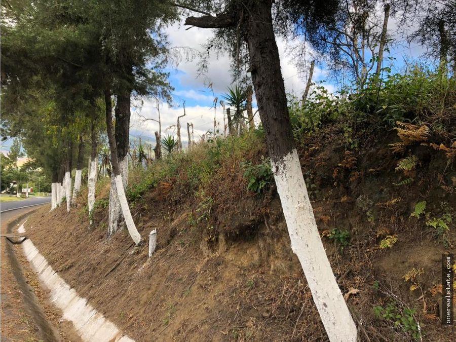 terreno san miguel duenas 36 x 209 mts km 52