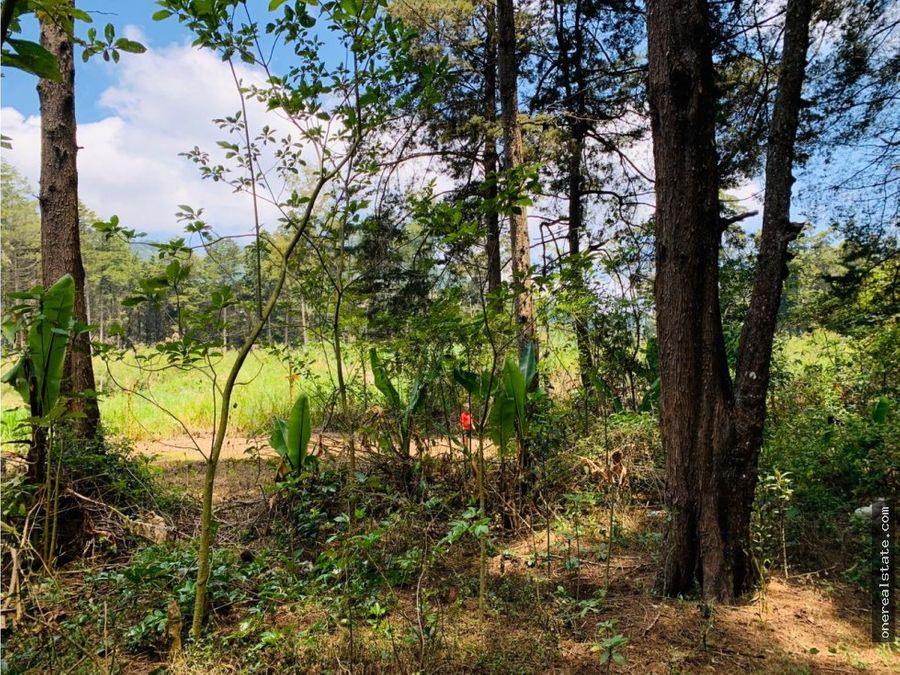 san jose pinula terreno de 10 manzanas