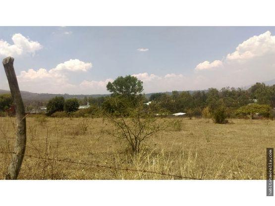terreno a espaldas de fira una hectarea