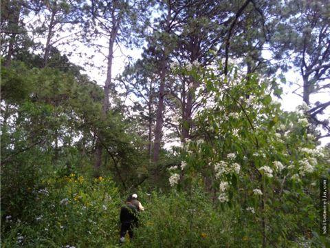 55 hectareas con agua el manzanillal mil cumbres