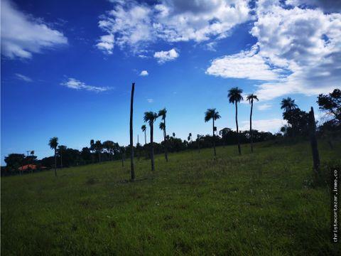 vendo hermoso terreno en nueva colombia