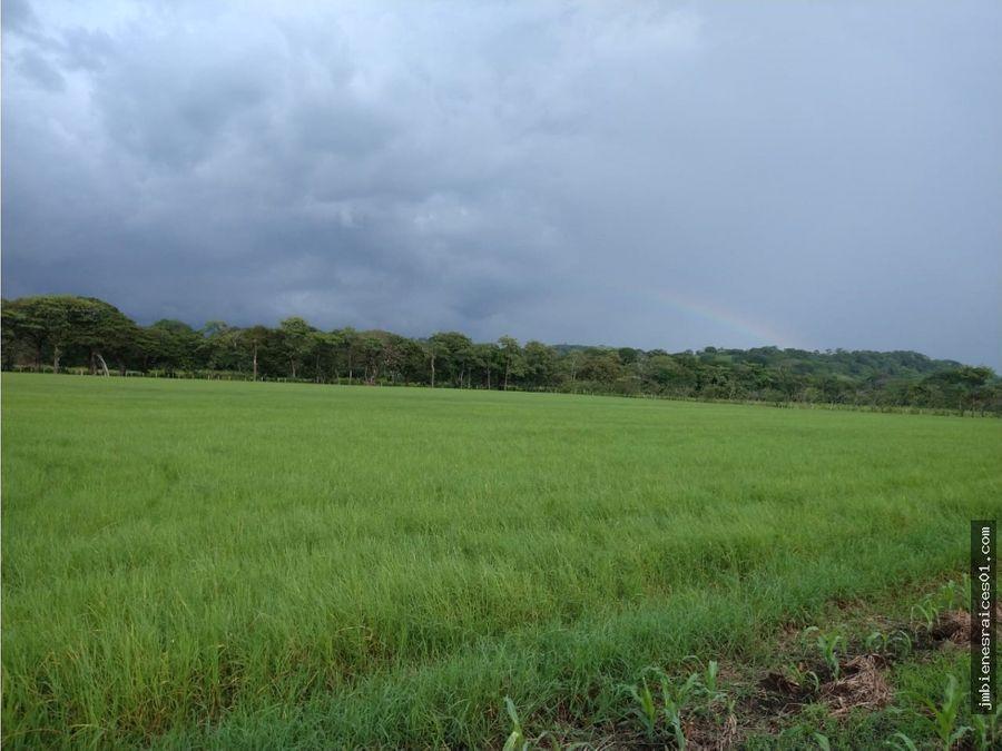 fca032 finca en bagaces guanacaste de 260 hectareas