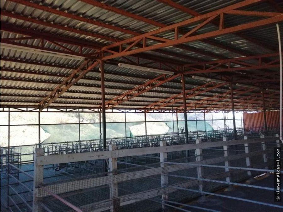 finca en canas guanacaste de 128 hectareas