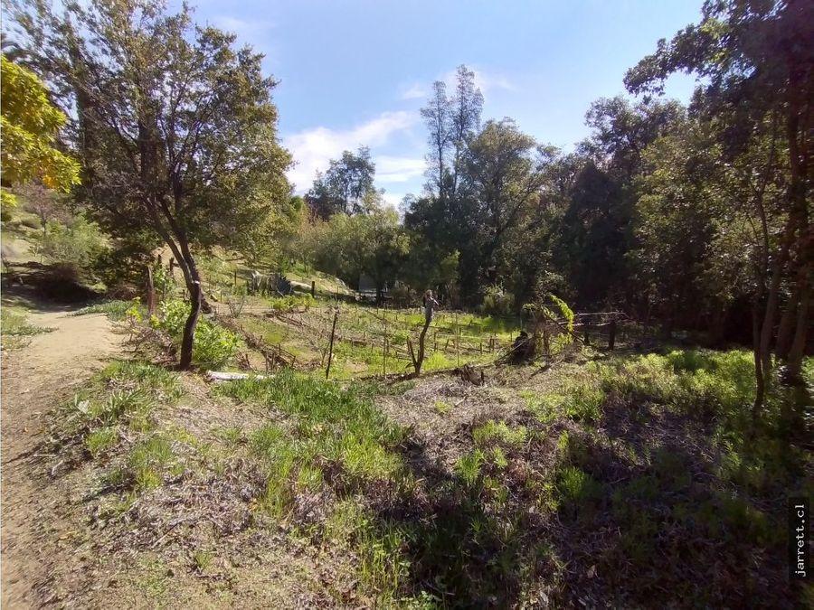 jarrett vende propiedad refugio naturaleza olmue