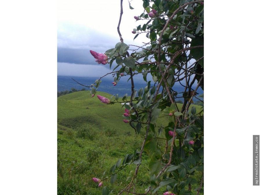 finca san carlos 27 hectareas ganadera lecheria