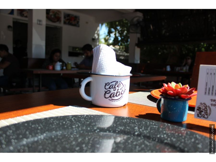cafe del cabo universidad mundial san jose
