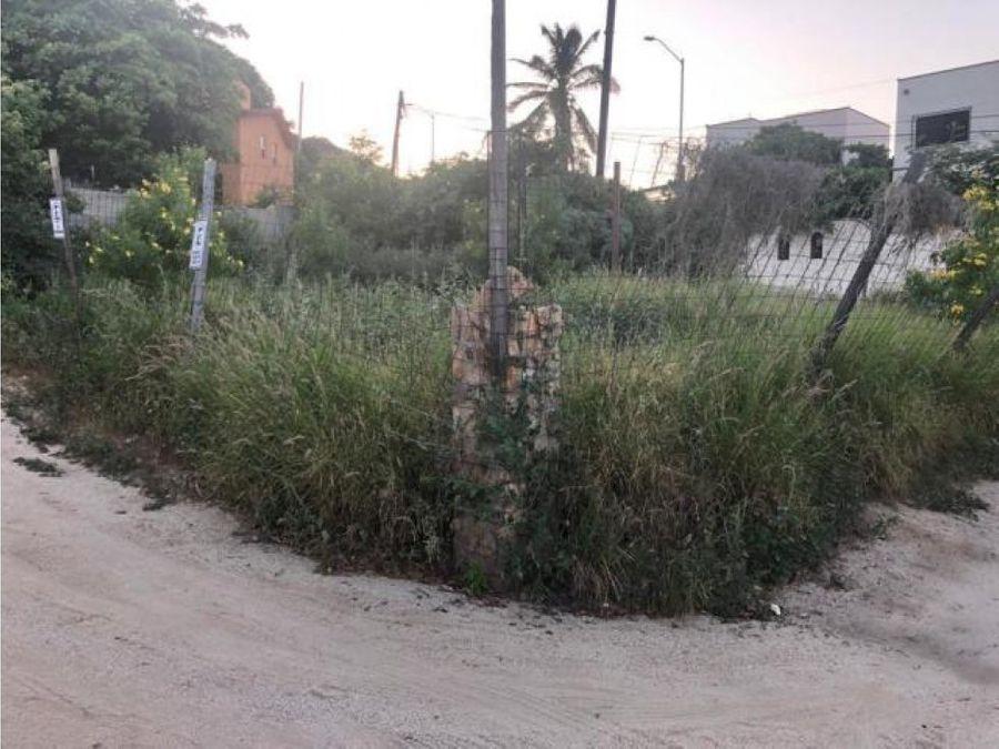 terreno centro amelia amelia wilkes cabo san lucas