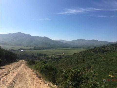 700 hectareas en la zorra