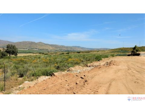 terreno en valle de guadalupe