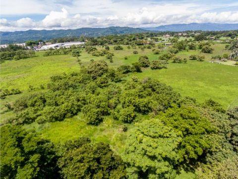 vendo propiedad de 10 hectareas en la guacima