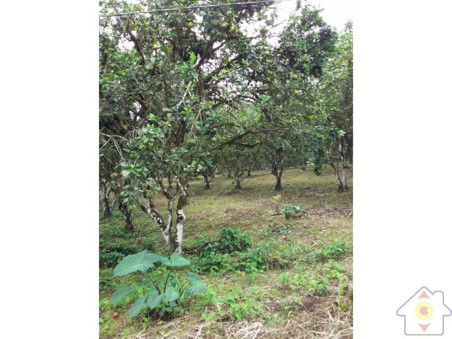 finca 7 manzanas rio celeste de guatuso con casa