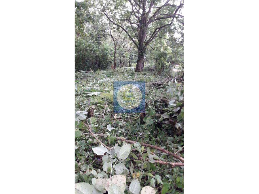 se vende finca de 65 hectareas en la costa atlantica id mh