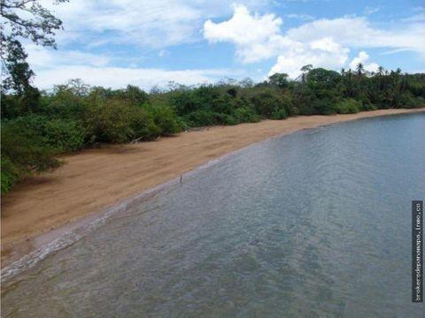se vende terreno isla del rey ak185638