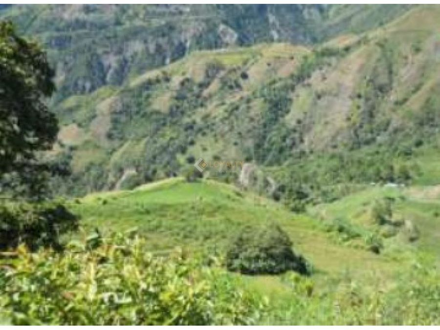 les 043 07 18 finca agricola en ocoa