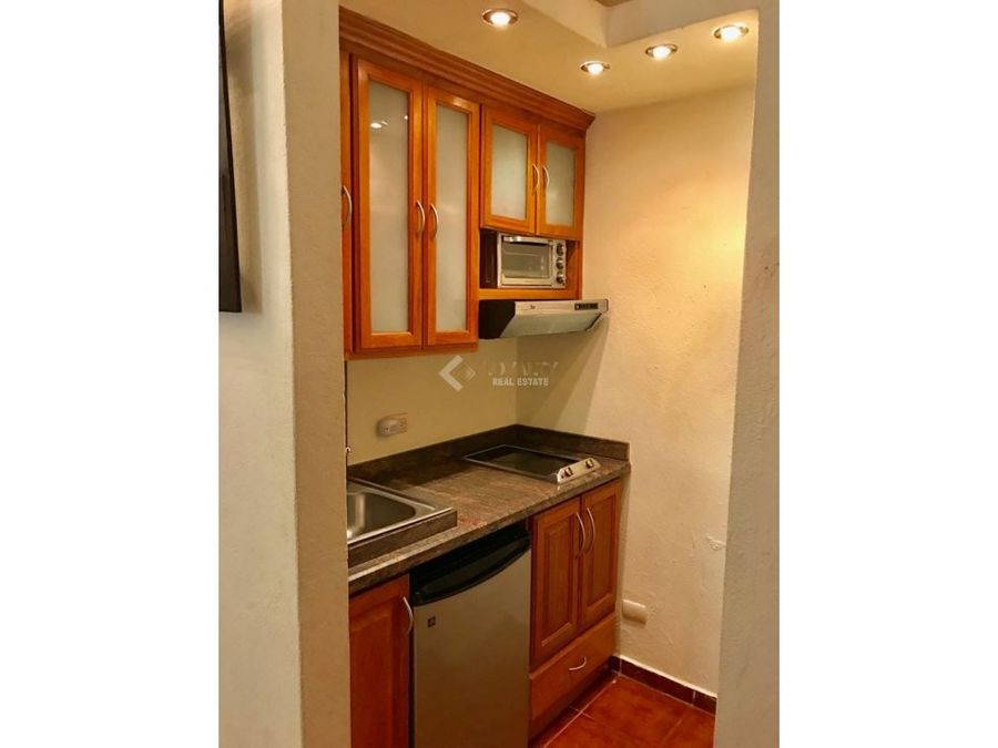 lar 008 01 19 1 apartamento en renta en z colonial