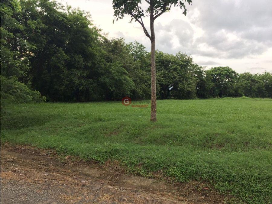colonias de chame 1160 m2 terreno