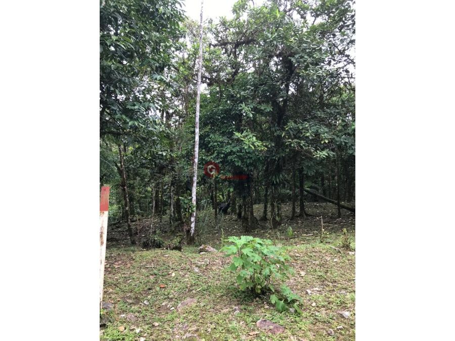 se vende terreno chame altos de maria 306816 m2
