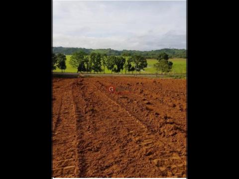 se vende finca sector el llano chepo 14 hectareas