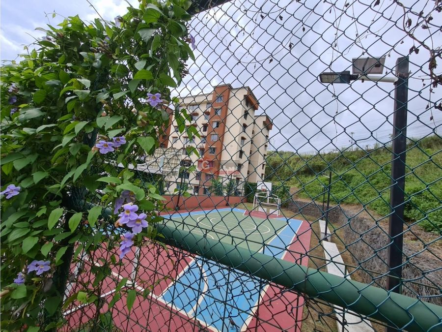 transismica fuentes de mallorca park