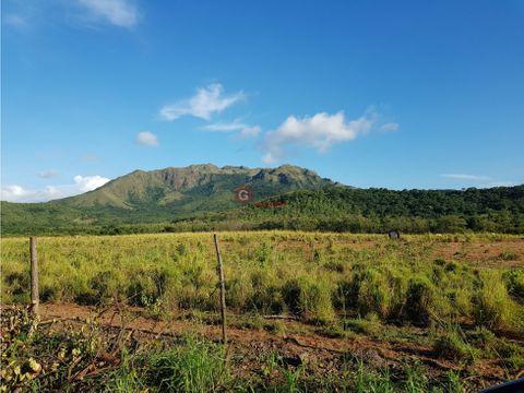 chame 57 hectareas p desarrollo