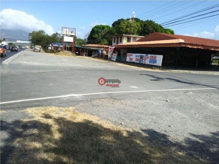 se vende terreno a orillas de la interamericana en chame 1663m2