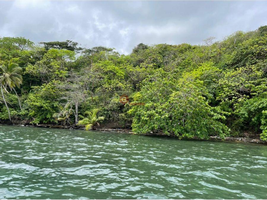 isla paulina colon 10 hectareas frente a isla mamey